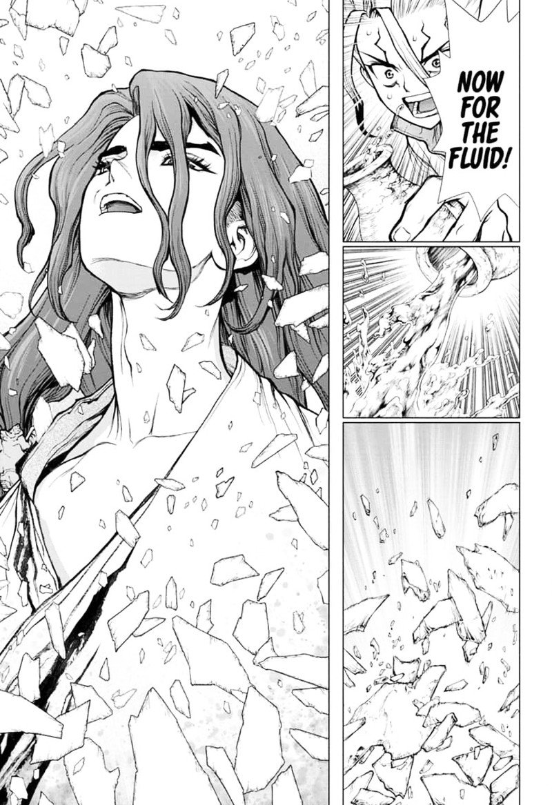 Dr. Stone : Chapter 141 - First Team image 010