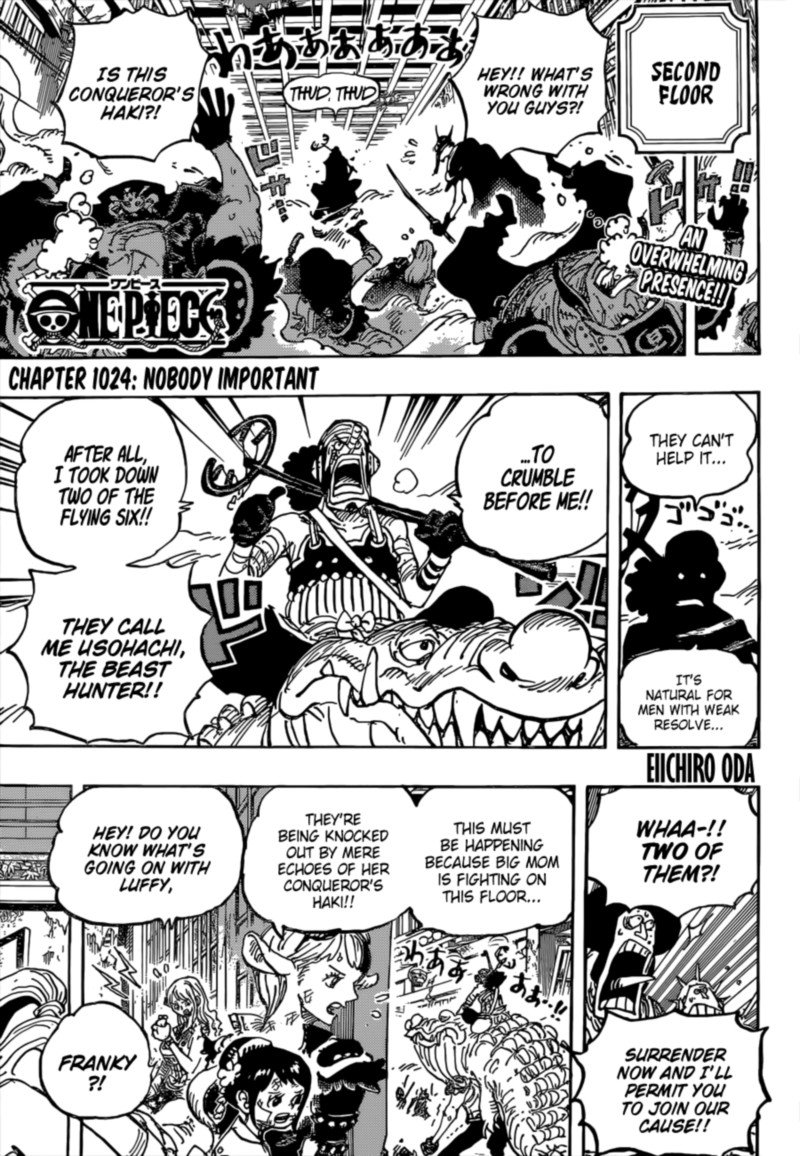 One Piece, Chapter 1024 image one_piece_1024_3